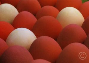 munad